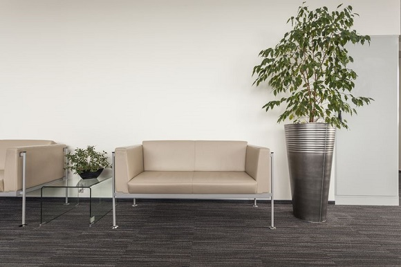 19505335   Modern Sofa Standing In An Office Hall